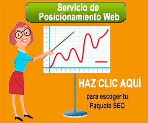 servicio de posicionamiento web
